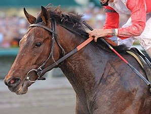 McGaughey Impressed With Orb's Latest Workout