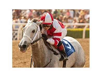 Joyful Victory will face five other older fillies and mares in the Molly Pitcher.