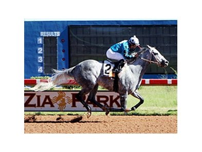 Chuchuluco brings win 2,000 for Alfredo Juarez, Jr.