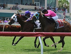 Gulfstream Handle Hits $3.3M for July 4 Card