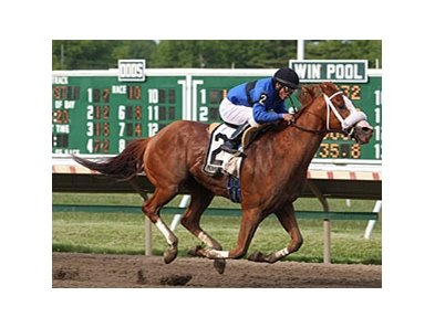 Ponzi Scheme won the Decathlon Stakes on opening day at Monmouth Park.