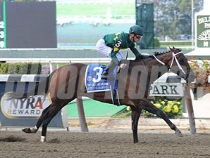 Dust and Diamonds wins the 2012 Gallant Bloom.