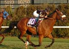 "Dave will break from post six in the Pan American Handicap.<br><a target=""blank"" href=""http://www.bloodhorse.com/horse-racing/photo-store?ref=http%3A%2F%2Fpictopia.com%2Fperl%2Fgal%3Fprovider_id%3D368%26ptp_photo_id%3D2744477%26ref%3Dstory"">Order This Photo</a>"