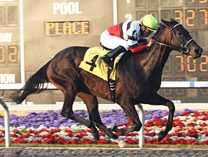 Ariana D wins the 2010 Northern Fling Stakes.