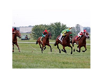 Kentucky Downs set new benchmarks for on-track and all sources handle in 2012.