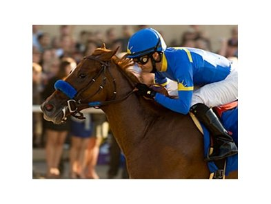 "Tell a Kelly impresses in the Darley Debutante.<br><a target=""blank"" href=""http://www.bloodhorse.com/horse-racing/photo-store?ref=http%3A%2F%2Fpictopia.com%2Fperl%2Fgal%3Fprovider_id%3D368%26ptp_photo_id%3D9170882%26ref%3Dstory"">Order This Photo</a>"
