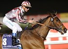 Historic Sheema Classic for Female Trainer