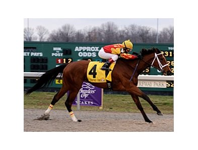 "Maren's Meadow won the Bourbonette (gr. III) this past spring at Turfway Park. <br><a target=""blank"" href=""http://www.bloodhorse.com/horse-racing/photo-store?ref=http%3A%2F%2Fpictopia.com%2Fperl%2Fgal%3Fprovider_id%3D368%26ptp_photo_id%3D3958581%0D%0A%26ref%3Dstory"">Order This Photo</a>"