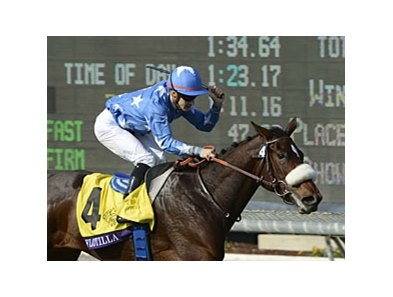 "2012 Breeders' Cup Juvenile Fillies Turf winner Flotilla <br><a target=""blank"" href=""http://photos.bloodhorse.com/BreedersCup/2012-Breeders-Cup/Juvenile-Fillies-Turf/26130221_nMsRcw#!i=2191924750&k=48JvM6X"">Order This Photo</a>"