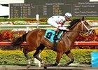 "Big Brown drew post 12 and is the morning line favorite, at 3-1, for the Florida Derby (gr. I).<br><a target=""blank"" href=""http://www.bloodhorse.com/horse-racing/photo-store?ref=http%3A%2F%2Fpictopia.com%2Fperl%2Fgal%3Fprovider_id%3D368%26ptp_photo_id%3D3810291%26ref%3Dstory"">Order This Photo</a>"