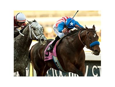 Fed Biz fights off Tritap to win the San Fernando.