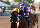 The Whitney Holds Breeders' Cup Classic Berth
