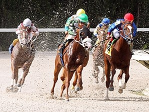 Secret Kitten wins the 2013 Cassidy Stakes.