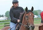 Big Brown at Churchill Downs May 7