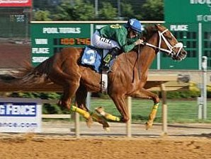 Lucy's Bob Boy wins the 2013 Confucius Say Stakes.