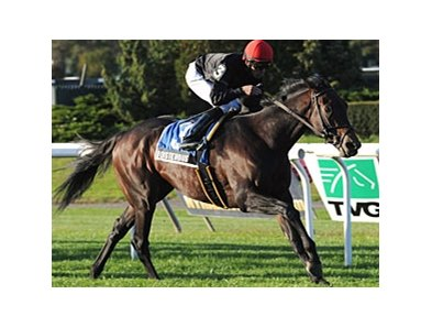 "Boisterous heads a noteworthy field in the Monmouth Stakes.<br><a target=""blank"" href=""http://photos.bloodhorse.com/AtTheRaces-1/at-the-races-2012/22274956_jFd5jM#!i=2147306952&k=BxH84pm"">Order This Photo</a>"