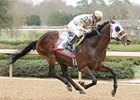 "Sierra Sunset and Chris Emigh pull away in the Rebel Stakes.<br><a target=""blank"" href=""http://www.bloodhorse.com/horse-racing/photo-store?ref=http%3A%2F%2Fpictopia.com%2Fperl%2Fgal%3Fprovider_id%3D368%26ptp_photo_id%3D3918873%26ref%3Dstory"">Order This Photo</a>"