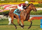 "Criticism is the 121-pound high weight in the La Prevoyante Handicap.<br><a target=""blank"" href=""http://www.bloodhorse.com/horse-racing/photo-store?ref=http%3A%2F%2Fpictopia.com%2Fperl%2Fgal%3Fprovider_id%3D368%26ptp_photo_id%3D7794246%26ref%3Dstory"">Order This Photo</a>"