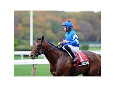 "Buffum<br><a target=""blank"" href=""http://photos.bloodhorse.com/AtTheRaces-1/at-the-races-2012/22274956_jFd5jM#!i=2178035310&k=36gFDXj"">Order This Photo</a>"