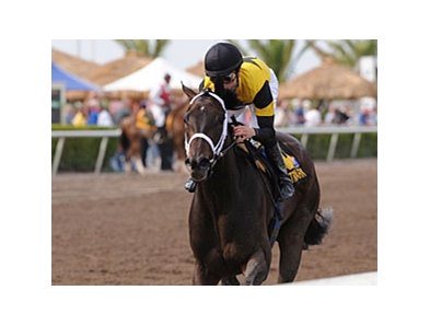 "Justwhistledixie has won her last five races.<br><a target=""blank"" href=""http://www.bloodhorse.com/horse-racing/photo-store?ref=http%3A%2F%2Fpictopia.com%2Fperl%2Fgal%3Fprovider_id%3D368%26ptp_photo_id%3D7956369%26ref%3Dstory"">Order This Photo</a>"