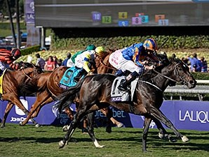 Magician wins the 2013 Breeders' Cup Turf.