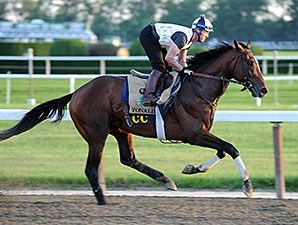 Tonalist - Belmont Park, May 27, 2014