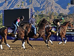 Close Hatches and Royal Delta prep for Breeders' Cup 2013