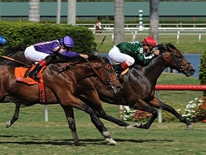 Sporting Art gets his first U.S. win in the Bulleit Bourbon Palm Beach.