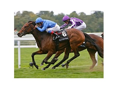 "White Moonstone fights off Together to win the Meon Valley Stud Fillies' Mile at Ascot.  <br><a target=""blank"" href=""http://www.bloodhorse.com/horse-racing/photo-store?ref=http%3A%2F%2Fpictopia.com%2Fperl%2Fgal%3Fprovider_id%3D368%26ptp_photo_id%3D9204079%26ref%3Dstory"">Order This Photo</a>"