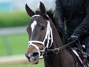 Her Smile at Churchill Downs 5/4/2011.