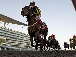 Krypton Factor wins the 2012 Mahab Al Shimaal.