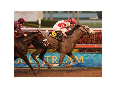 "Winslow Homer holds off favorite Jackson Bend to take the Holy Bull.<br><a target=""blank"" href=""http://www.bloodhorse.com/horse-racing/photo-store?ref=http%3A%2F%2Fpictopia.com%2Fperl%2Fgal%3Fprovider_id%3D368%26ptp_photo_id%3D8758108%26ref%3Dstory"">Order This Photo</a>"
