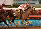"Winslow Homer won the Holy Bull on Jan. 23.<br><a target=""blank"" href=""http://www.bloodhorse.com/horse-racing/photo-store?ref=http%3A%2F%2Fpictopia.com%2Fperl%2Fgal%3Fprovider_id%3D368%26ptp_photo_id%3D8758108%26ref%3Dstory"">Order This Photo</a>"