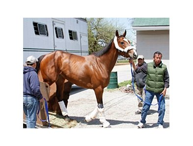 Plum Pretty, one of the likely starters in the Oaks, arrived at Churchill Downs on April 21.