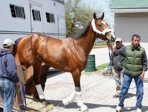 Plum Pretty arrives at Churchill Downs on April 21, 2011.