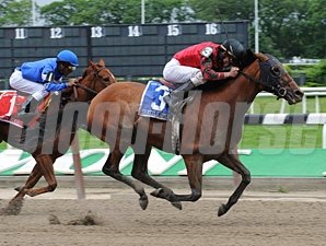 Seattle Smooth wins the 2009 Ogden Phipps.