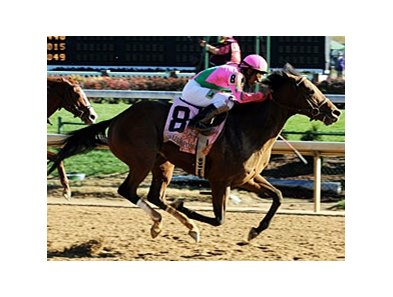 Caleb's Posse
