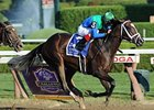 "Love and Pride takes the Personal Ensign Stakes at Saratoga Race Course.<br><a target=""blank"" href=""http://photos.bloodhorse.com/AtTheRaces-1/at-the-races-2012/22274956_jFd5jM#!i=2049005879&k=xHTDvdN"">Order This Photo</a>"