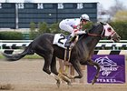"Wood Memorial winner I Want Revenge arrived at Churchill Downs April 7. <br><a target=""blank"" href=""http://www.bloodhorse.com/horse-racing/photo-store?ref=http%3A%2F%2Fgallery.pictopia.com%2Fbloodhorse%2Fgallery%2FS631826%2Fphoto%2F7981673%2F%3Fo%3D5"">Order This Photo</a>"