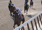 "Dwyer winner Fly Down<br><a target=""blank"" href=""http://www.bloodhorse.com/horse-racing/photo-store?ref=http%3A%2F%2Fpictopia.com%2Fperl%2Fgal%3Fprovider_id%3D368%26ptp_photo_id%3D8950329%26ref%3Dstory"">Order This Photo</a>"