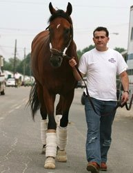 Big Brown Arrives at Monmouth Park