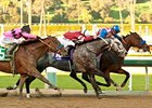 Fed Biz (right) finished a head in front of Tritap (center, gray) in the San Fernando, with Guilt Trip in 3rd.