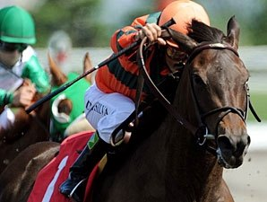 Canadian Horse of the Year Biofuel Retired