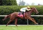 Dayatthespa is a perfect 5-for-5 in 2012.