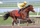 The Blue Grass Nominees include Fountain of Youth winner Union Rags