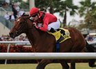 Nordic Truce, Quiet Harbor Take Gulf Stakes