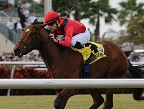 Nordic Truce wins the 2010 Dania Beach.