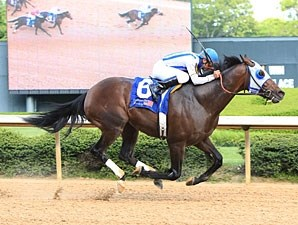 Alternation wins the 2012 Oaklawn Handicap.