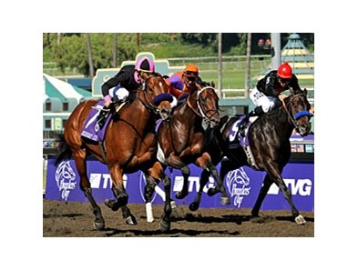 "Albertus Maximus (left) sweeps by to take the Breeders' Cup Dirt Mile.<br><a target=""blank"" href=""http://www.bloodhorse.com/horse-racing/photo-store?ref=http%3A%2F%2Fpictopia.com%2Fperl%2Fgal%3Fprovider_id%3D368%26ptp_photo_id%3D6456494%26ref%3Dstory"">Order This Photo</a>"