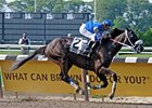Delosvientos, shown winning the 2008 Brooklyn, will try to repeat in 2009.